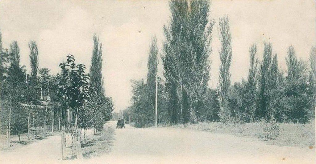 Дорога в Лески (1)