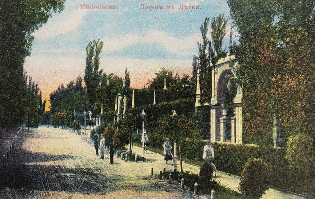 Дорога в Лески (2)