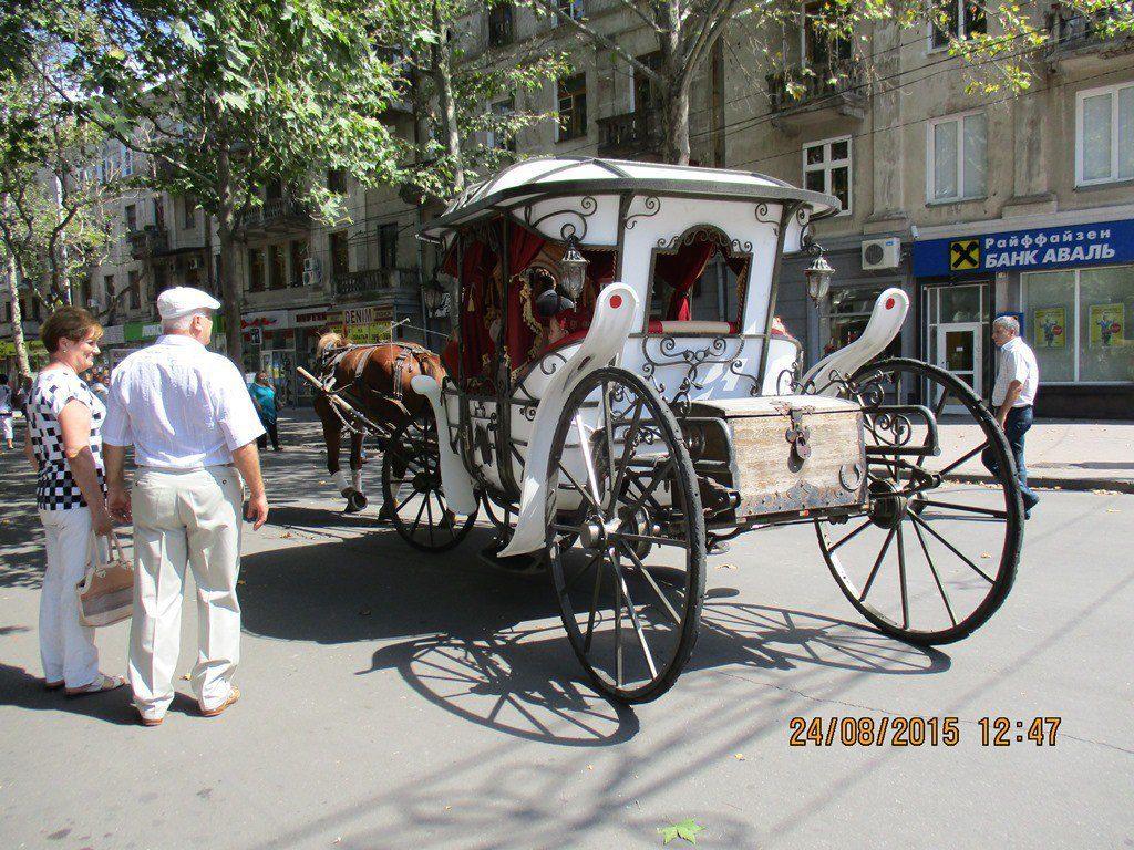 Карета на главной улице (1)