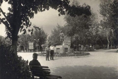 Парк Петровского
