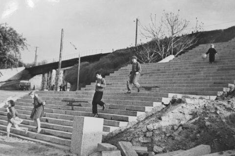 Строительство лестницы с бульвара