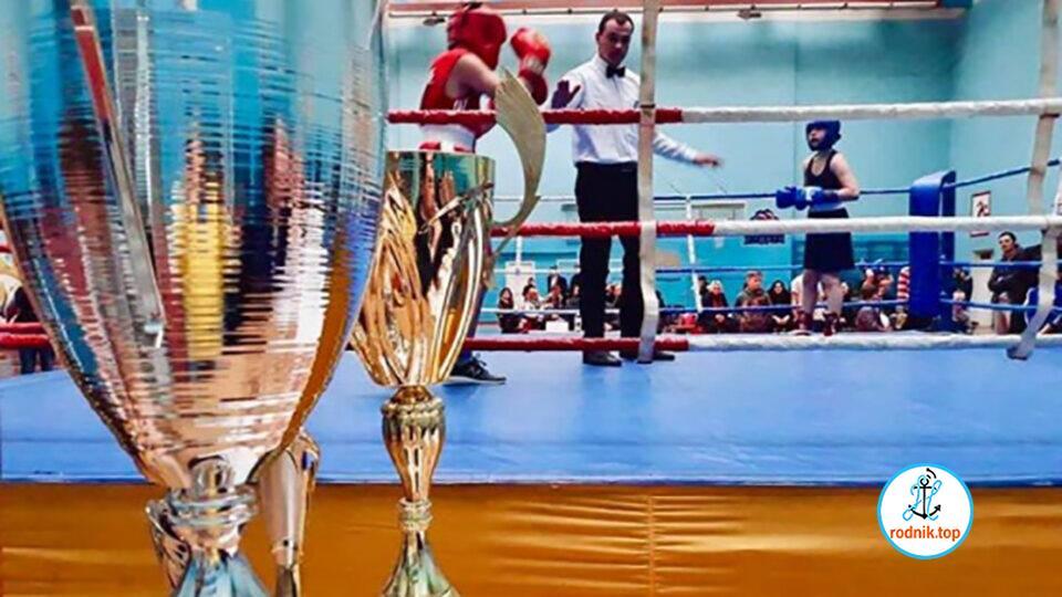 Юные николаевцы выиграли соревнование по боксу
