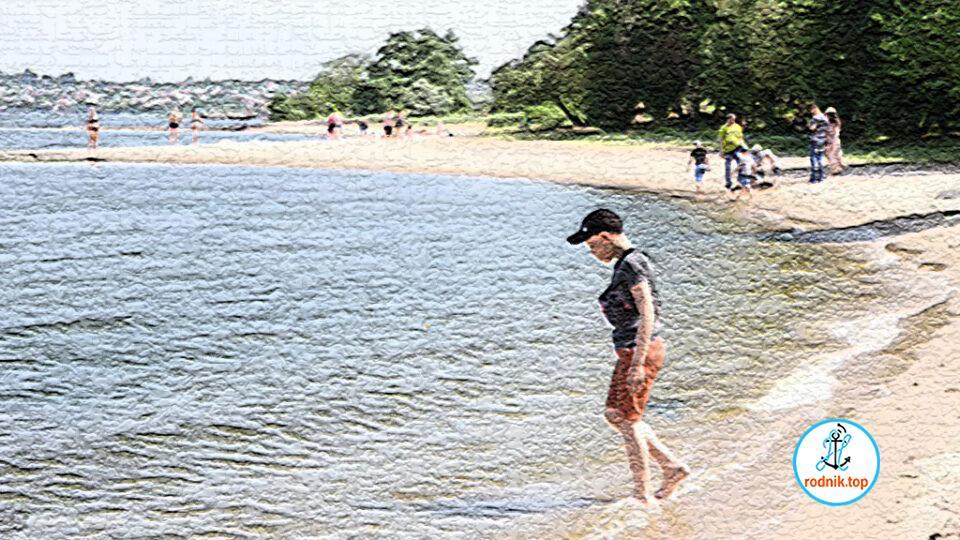 На пляжах Николаевщины растёт содержание кишечной палочки